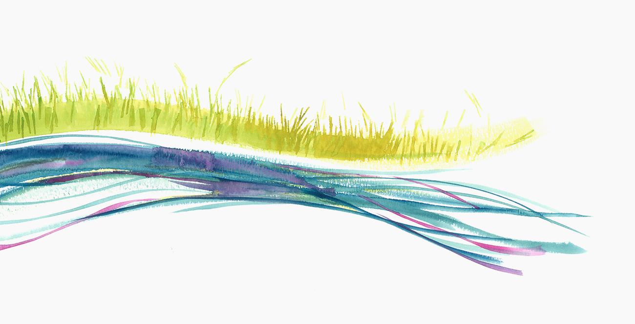 colorado-agricultural-water-alliance_streamag_shane-miles-design